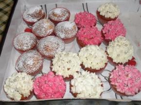 Muffin!!!