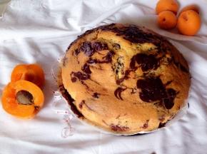 Torta ciocco-vaniglia all'albicocca