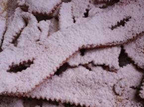 [ 2° sfida culinaria ]  chiacchere di carnevale