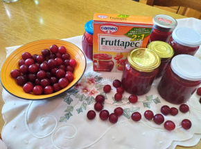 Marmellata di prugne ciliegine