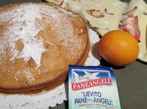 Torta crema all'arancia senza uiva