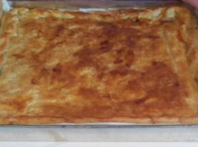 Torta salata parmigiana