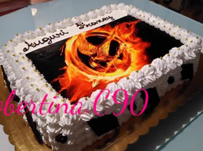 Torta compleanno Hunger games senza glutine