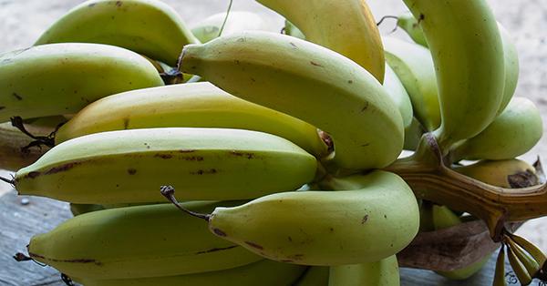 Intolleranza al glutine, dal brasile la farina dalle banane verdi