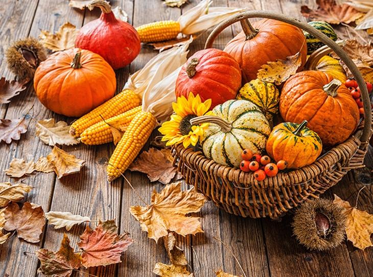 La zucca: un sapore perfetto per i dolci di stagione