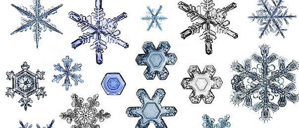 Festa della neve: organizza un party a tema