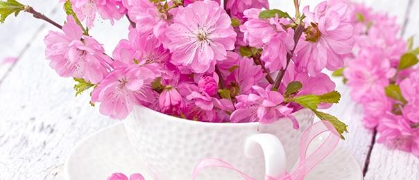 La Festa di Primavera a casa tua