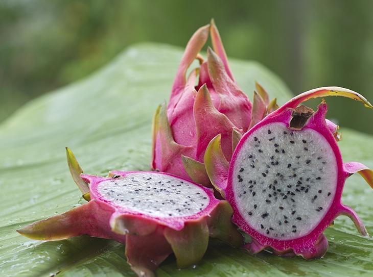 Hai mai assaggiato il dragon fruit?