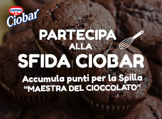 Sfida ciobar_NO LOG
